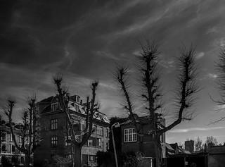 FRB. SKY & ARCHITECTURAL VUE | Noir-et-blanc