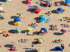 Portugal 2017-9021080-2 (myobb (David Lopes)) Tags: 2017 adobestock allrightsreserved atlanticocean europe nazare portugal aerialview beach beachumbrella copyrighted day daylight enjoyment highangleview leisureactivity outdoors sand sunbathing tourism touristattraction traveldestination umbrella vacation ©2017davidlopes
