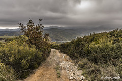 Montes bercianos (Javier Arcilla) Tags: monte montaña naturaleza moñonl elbierzo castillayleon leon españa cielo nubes gris