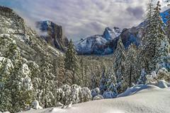 Dreamland in Yosemite (Omnitrigger) Tags: yosemite tunnelview valley snowstorm fresh nature california winter2018