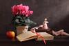 A Flight Of Butterflies (panga_ua) Tags: aflightofbutterflies flower floral cyclamen pink pot apple book ribbon red lace doily woodenbox figurine springtime