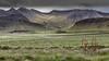 Icelandic Countryside (Role Bigler) Tags: agrarkultur berg berge canonef70200mmf4lisusm canoneos5dsr countryside iceland island landschaft natur nature agrarlandschaft agricultur agriculturallandscape bergkette landscape mountain mountainrange mountains scenery
