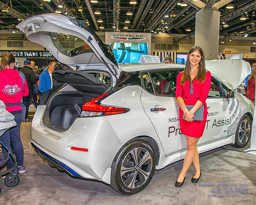 A Nice Nissan Product Specialist and A Nissan Leaf Open for Inspection