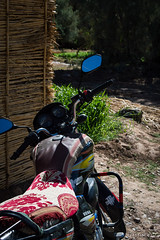 Vallee du Draa © Sophie Bigo - SBGD 2018-7 (SBGD_SophieBigo) Tags: photography artdirector freelance sophiebigo maroc trip travelphotography traveler trek morocco light