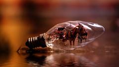 Art - 4791 (YᗩSᗰIᘉᗴ HᗴᘉS +17 000 000 thx) Tags: creative art manipulation lamp ampoule light hensyasmine namur belgium europa aaa namuroise look photo friends be wow yasminehens interest intersting eu fr greatphotographers lanamuroise fujifilmgfx50s fuji