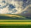 Green field (Katarina 2353) Tags: katarina2353 katarinastefanovic