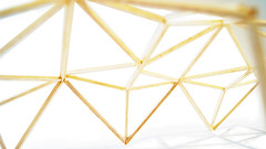 A structural model of Bioneer's roof showing the truss framework. (University of Bath) Tags: bioneer basilspence architecture civilengineering project undergraduate