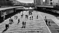 CityLife (Sergio_MI) Tags: urban urbanlandscape passante paesaggiourbano street streetphotography blackandwhite square people city citylife urbano piazza città shopping commerciale centrocommerciale architecture architettura shadows ombre