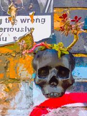 The Wrong Master (Steve Taylor (Photography)) Tags: worshippingthewrongmasterseriouslyharmsyoursoul skull succulent art digital graffiti poster pasteup wheatup wheatpaste streetart brick uk gb england greatbritain unitedkingdom london texture
