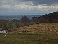 Field (Bricheno) Tags: arran isleofarran island clyde firthofclyde scotlandinminiature bricheno whitingbay glenashdale scotland escocia schottland écosse scozia escòcia szkocja scoția 蘇格蘭 स्कॉटलैंड σκωτία