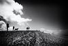 Dune du Pilat IV (Salva Pagès) Tags: duna dune dunedupilat arcachon bordeaux pylasurmer blancoynegro blancinegre blackandwhite blancetnoir backlight contrallum contraluz