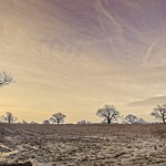 Ploughed field at dawn thumbnail