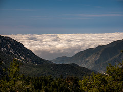 POTD 098 (Webtraverser) Tags: 365picturesin2018 abovetheclouds californiamountains cloudporn clouds g85 getoutthere hiking landscape micro43 mountains mountbaldy pad2018098 pictureaday pictureoftheday potd2018 california unitedstates us
