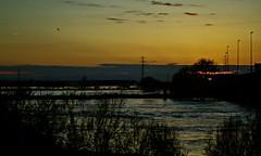 Ebro-Zaragoza (portalealba) Tags: zaragoza zaragozaparque ebro aragon españa spain agua ranillas portalealba pentax pentaxk50 sunset puestadesol atardecer