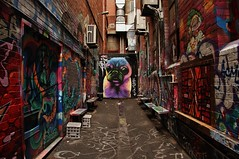 Croft Alley (sonofwalrus) Tags: canon eos7d slr melbourne victoria australia alley laneway lane graffiti art streetart croftalley dog milkcrates wall