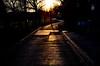 Street sundown (simonclaeye) Tags: sun light dark winter street art nikon nikond nikond7000 photography tree nature road town belgium