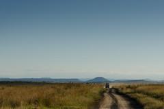 Sunset Game Drive (Matt Gorvett Photography) Tags: road car clear sky south africa hot heat nikon d5100 dslr evening grass green hills holiday landscape bush wild nambiti game drive safari drakensberg mountains sunset