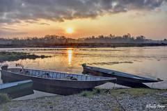 Alba a Ticino (alfvet) Tags: ticino fiumeticino parcodelticino nikon d7200 sole alba sunrise acqua riflessi coloridelmattino barche boats