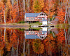 Autumn Cabin (Shutterbugsafari) Tags: cottage nature landscape water autumn shore lake ontario reflection provincial peaceful colorful leaves orange foliage october red fall national yellow canada woods serene tranquil forest natural calm wilderness shoreline vacation golden dock beautiful muskoka chair reflect pure ripples calmness color vivid tree tranquility