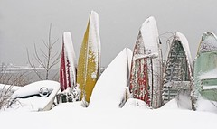 Colors of winter (Robert Dennis Photography) Tags: snowfall winter maine kennebunkport capeporpoise