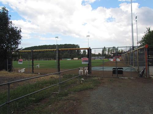 Left Field Bullpen at The Fort at MIT Ballpark -- Narrabundah, ACT, Australia, January 25, 2018
