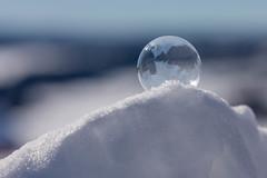 Frozen soap bubble (pss_foto) Tags: såpeboble vinter frossen mars frozen