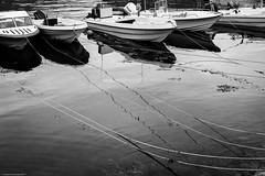 Ropes (ceeko) Tags: 2017 fujifilmx100f greenland landscape sisimiut blackwhite boats holiday marina rope holsteinsborg qeqqatakommune gl