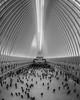 Westfield World Trade Center mall (Régis Corbet) Tags: america amérique ny newyork us usa unitedstates unitedstatesofamerica étatsunis étatsunisdamérique