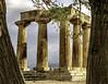 Corinth temple of Appollo (Tony Tomlin) Tags: greece europe mediterranean temple greektemple templeofapollo columns doric corinth