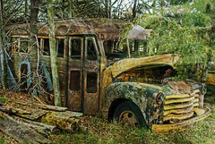 Once, But No More (garywitte845) Tags: ledgesstatepark bus transportation old rust textured
