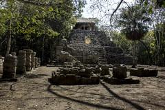 IMG_2842_1 (avolanti) Tags: coba mexico vacation travel wanderlust yucatan mayan ruins pyramids pyramid beautiful