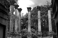 DMAFR Day 2 (18) (momentspause) Tags: canon5dmkiii canonef50mmf18 niftyfifty blackandwhite bw mississippi ruins column historic