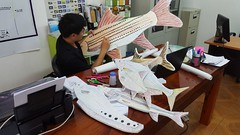 Making Probarbus puppet for World Fish Migration Day celebration in Laos