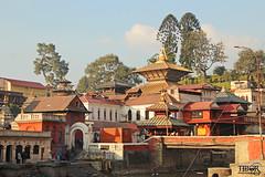 Pashupatinath Temple (morbidtibor) Tags: nepal kathmandu pashupatinath temple
