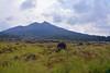 Kintamani, Rocky Terrain & Gunung Batur, Bali 4 - Taken from moving car so not so clear in the front. (Petter Thorden) Tags: bali indonesia kintamani lake gunung batur trunyan