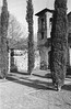 DSC_5062.jpg (desantisb) Tags: tmax stand films nikonf2a cameras speeds developers r09 times diluitions 400 60 1100 iso400
