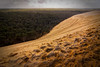 Dune du pilat II (Salva Pagès) Tags: dune duna dunedupilat bordeaux arcachon pylasurmer