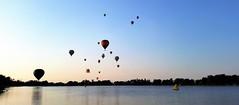 Lift Off! (Patricia Henschen) Tags: balloonliftoff balloonclassic hotairballoon prospect lake memorialpark park prospectlake colorado coloradosprings downtown laborday labordayliftoff balloon balloons morning dawn