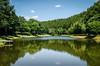 The Green Lake (Herr Nergal) Tags: fz1000 lumix panasonic landscape water lake pont eifel weiher see natur landschaft nature sky blue green reflection wasser reflexion spiegelung 7dwf