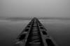 fog to the sea (davnaccari) Tags: sunrise fog sea beach caorle veneto italy blackandwhite