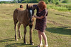 DSC_0936 (dmilokt) Tags: лошадь конь horse деревня village dmilokt
