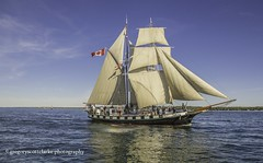 Black Jack - Canada's own. (gregoryscottclarke photography) Tags: brockville tallships sails masts galleon cannonsfire