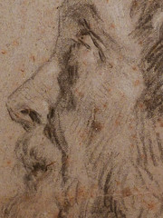 VAN DYCK Antoon - Tête d'Homme barbu, de profil (drawing, dessin, disegno-Louvre RF29063) - Detail 6 (L'art au présent) Tags: art painter peintre details détail détails detalles drawings dessins dessins17e 17thcenturydrawings louvre museum paris france dessinshollandais dutchdrawings dutchpainters peintreshollandais antoonvandyck antoon antoine anton book figure figures personnes people man men homme croquis étude study studies sketch sketches pose model portrait portraits face faces visage old elder oldman beardedman beard barbe