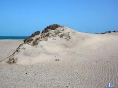 Mareejika (narayana 18) Tags: blue sea sky india cute beach beauty sand hill kerala fresh seashore nikon4800