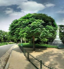 Parc Montsouris - 23-08-2006 - 13h16 (Panoramas) Tags: sky panorama paris france tree square de point perspective himmel ciel cielo squareformat rbol format nuages vanishing arbre rvore parc hdr ptassembler carr montsouris caelum fuite etiennecazin smartblend  tiennecazin