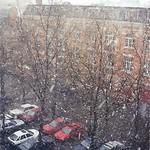 Snow in Brussels (Brussels, Belgium)