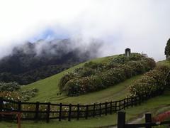 PICT0097 (randall_how) Tags: trail panama quetzals