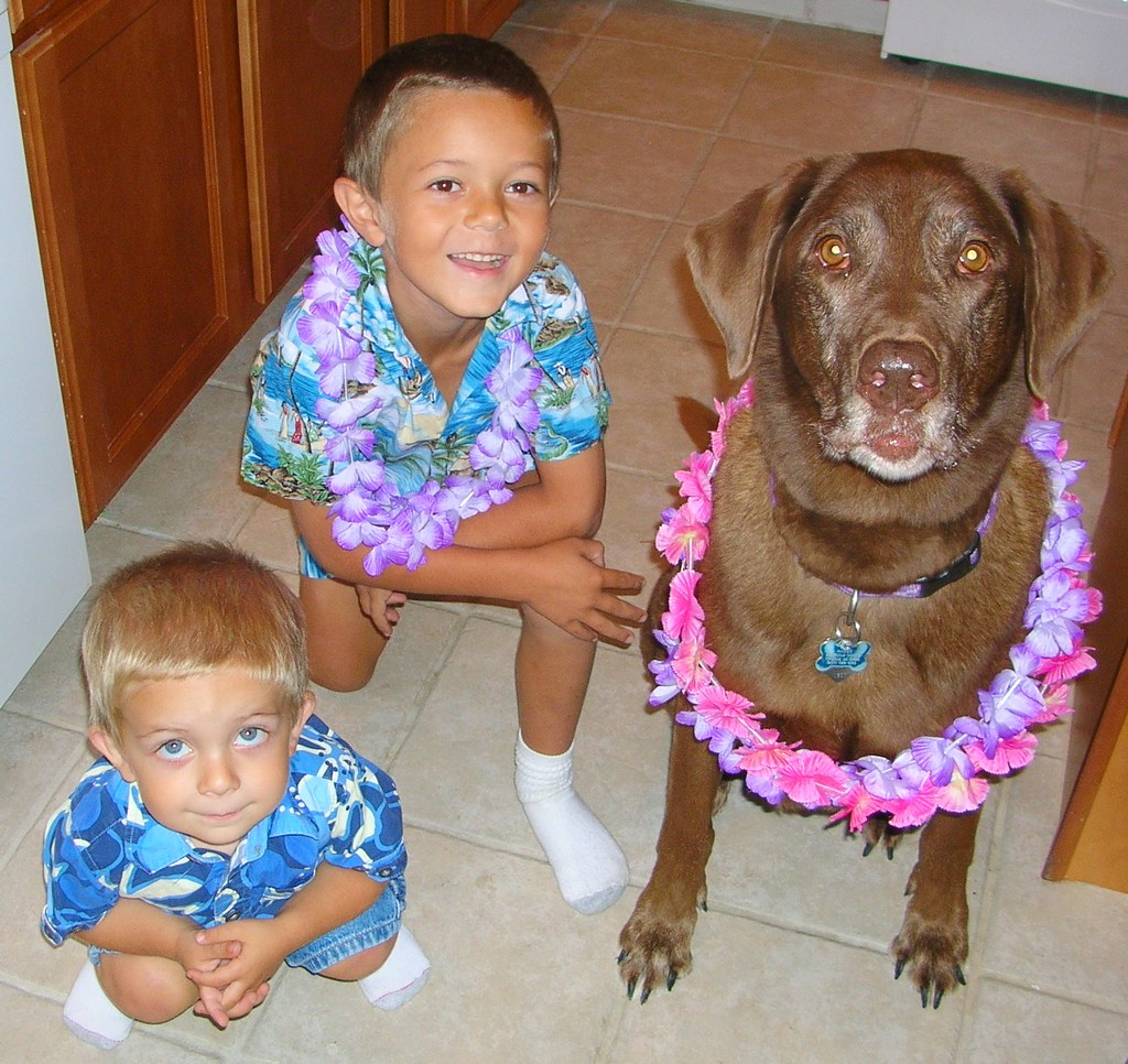 Luau Kids and Dog
