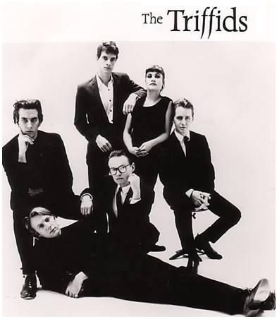 The Triffids with Graham Lee