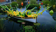 Chihuly at the New York Botanical Garden (Finstr) Tags: sculpture newyork reflection chihuly art nature water glass reeds garden boat flickr refraction thebronx lilypads botanicalgarden rushes dalechihuly artexhibit newyorkbotanicalgarden chihulyatthenewyorkbotanicalgarden